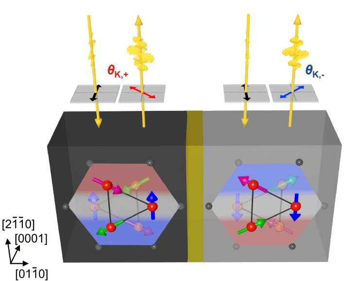 Study identifies metallic antiferromagnet with potential for memory devices