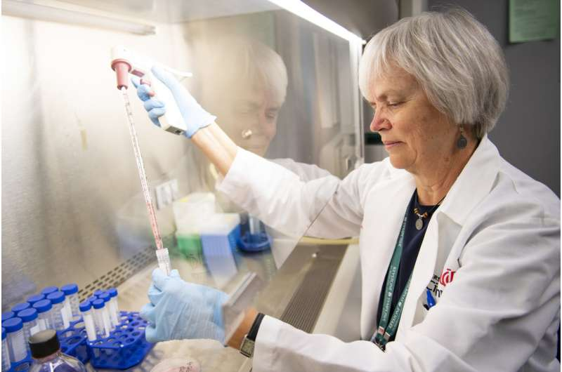Study provides new insights for ways to use cell metabolism to treat cancer
