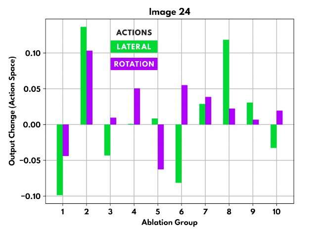 Using ablation to examine the structure of artificial neural networks