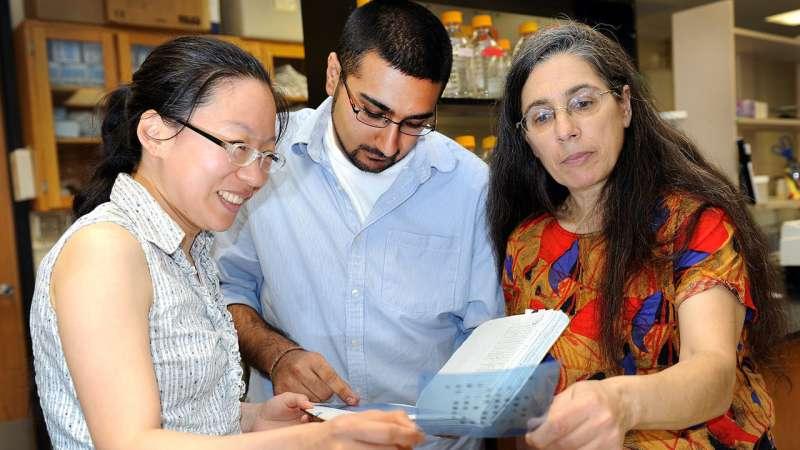 New study reveals hypervirulent Listeria strains and emerging clones