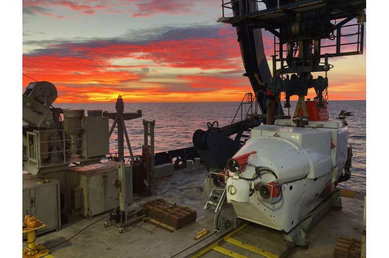 Newly discovered deep-sea microbes gobble greenhouse gases and perhaps oil spills, too