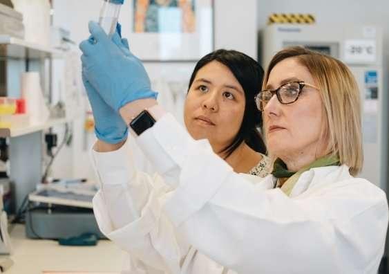 Breakthrough in schizophrenia identifies importance of immune cells