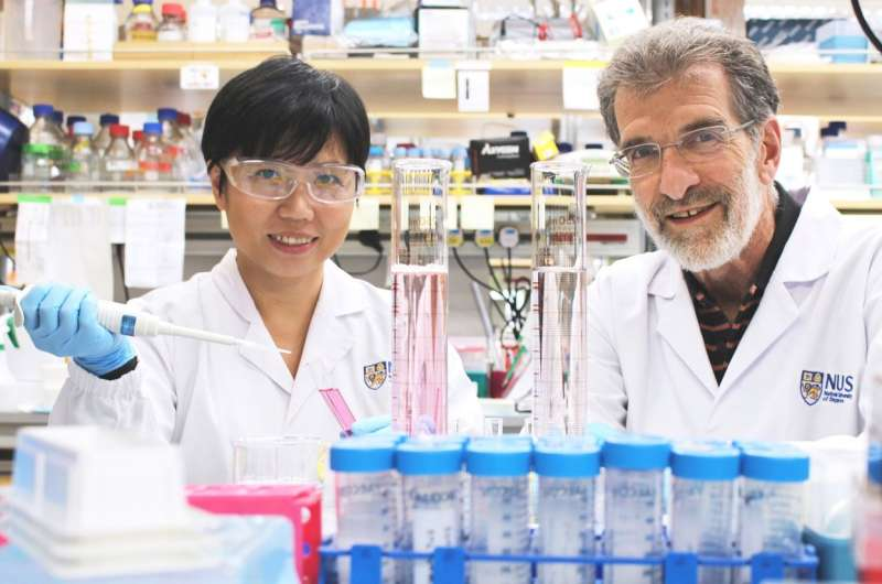 Scientists develop novel drug that could potentially treat liver cancer more effectively