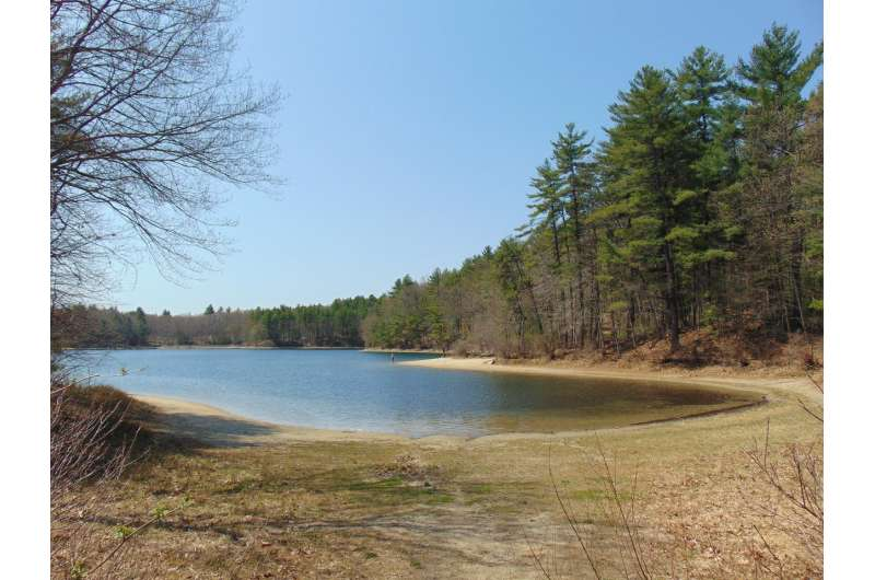 Climate change and recreational activities at Walden Pond have altered its ecosystem