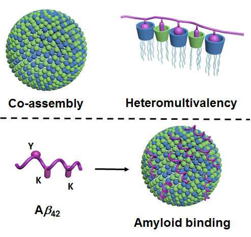 Chemists develop new method for selective binding of proteins