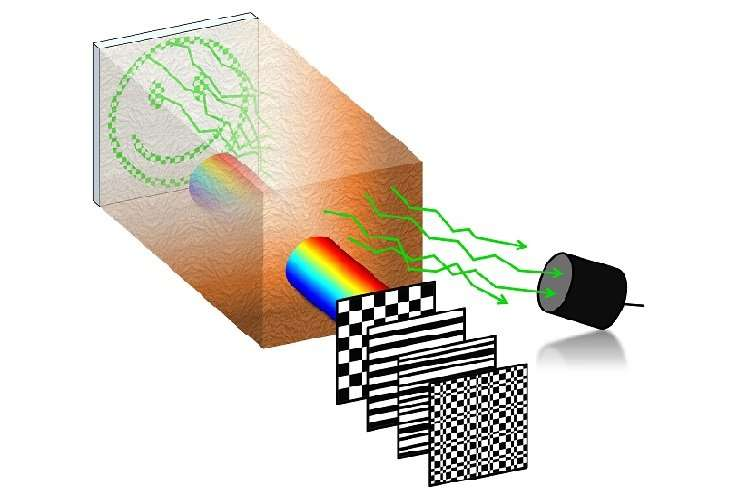 Researchers report innovative optical tissue imaging method