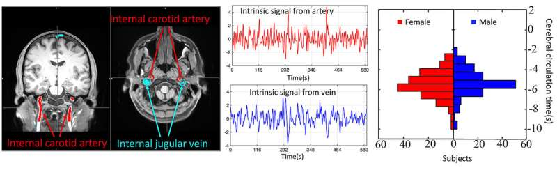 Imaging technology detects vascular disorders, brain injuries