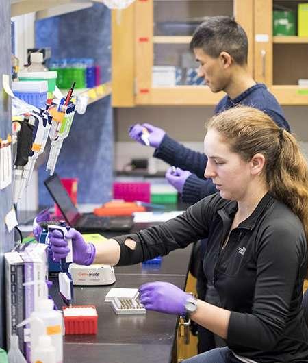 Researchers achieve random access in large-scale DNA data storage