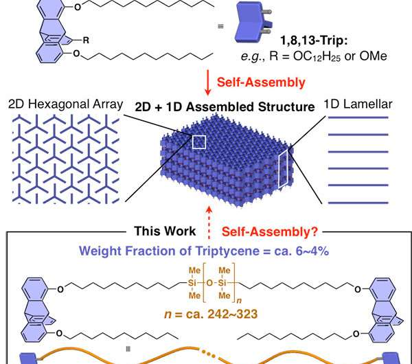 Self-assembling silicone-based polymers