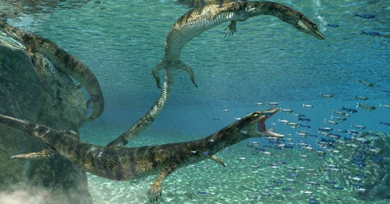 Scientists discover new species of ancient marine lizard