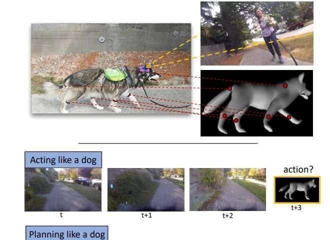 AI system trained to respond like a dog