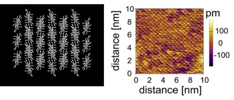 Cell membrane inspires new ultrathin electronic film