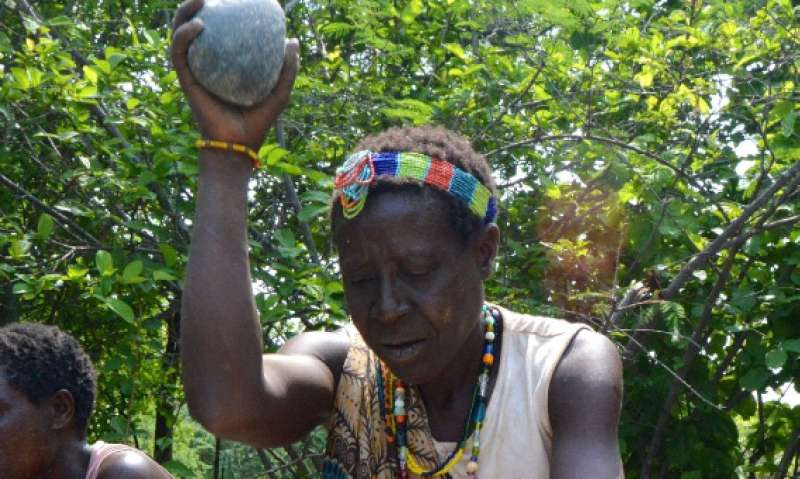 First 3-D analysis of the stone tools of African hunter-gatherers
