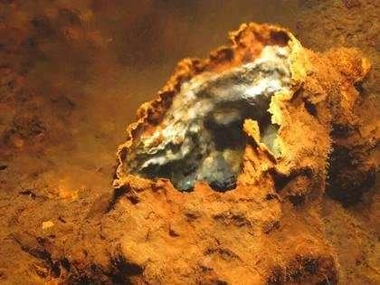 Extraordinary discovery in the mid-Atlantic ocean