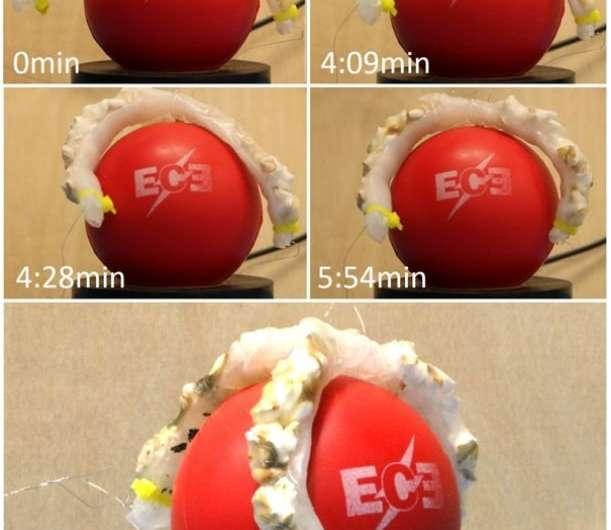 Popcorn robotics: Cornell team explored heated kernels
