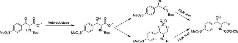 Synthesis of the veterinary antibiotic florfenicol by a fast chemo-enzymatic route