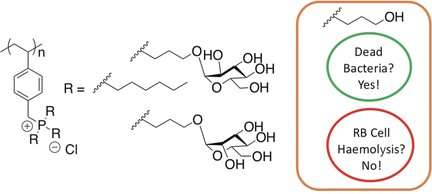 Surprising antibacterial activity and selectivity of hydrophilic phosphonium polymers