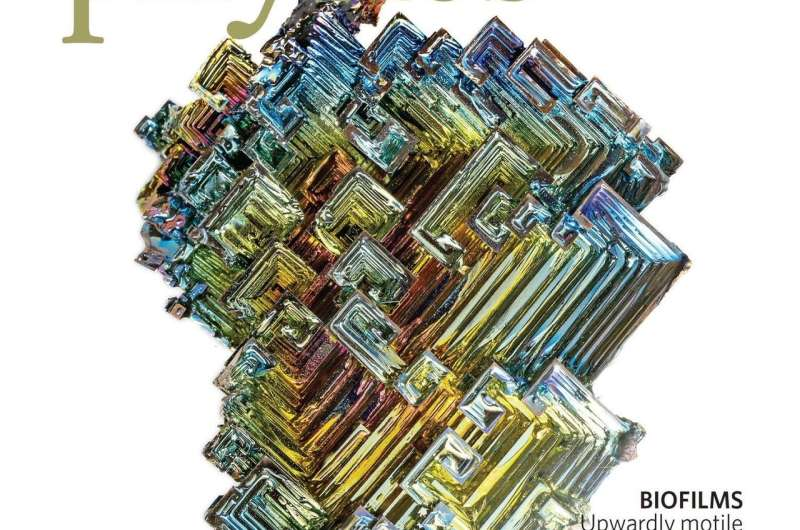 Bismuth shows novel conducting properties