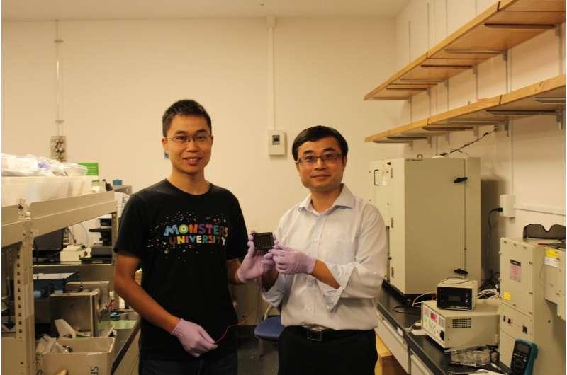 Perovskite solar cells leap toward commercialization
