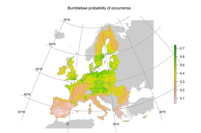 Distribution of bumblebees across Europe