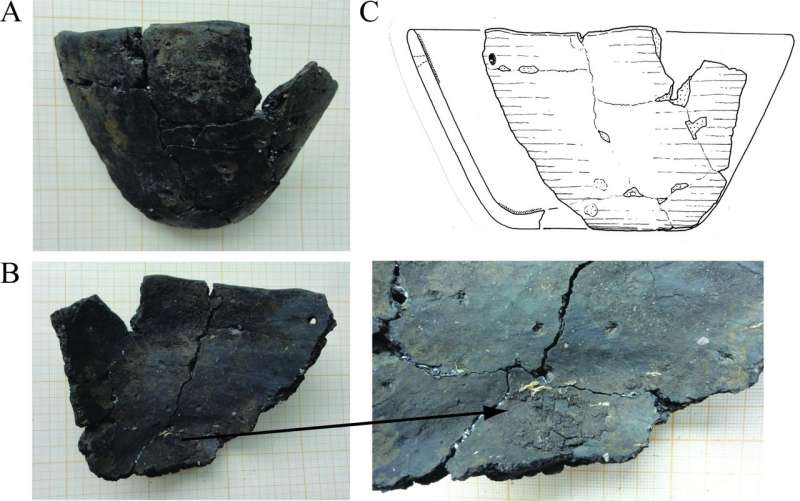 **Analysis of 6000-year-old earthenware bowl shows Mesolithic people were better at cooking than thought