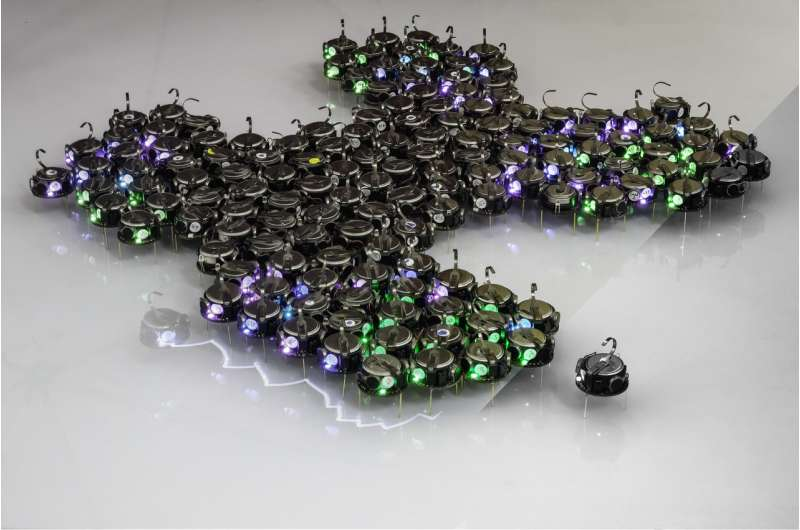 Growing bio-inspired shapes with hundreds of tiny robots