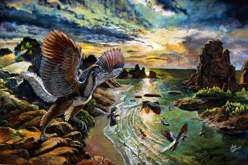 How we discovered a new species of the 'missing link' between dinosaurs and birds