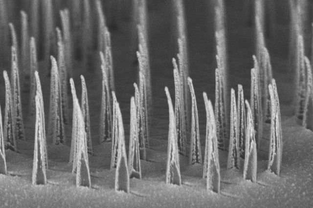 Nanostructures created at UCLA could make gene therapies safer, faster & more affordable