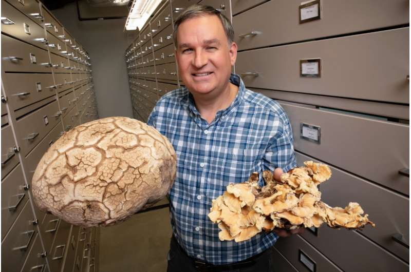 North American checklist identifies the fungus among us