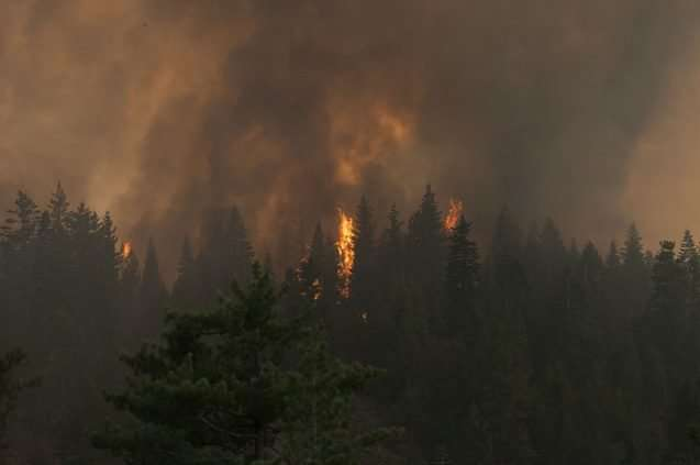 Scientists find strong link between climate change and wildfires
