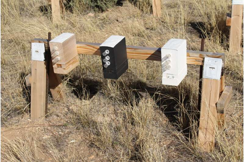 Climate change linked to potential population decline in bees