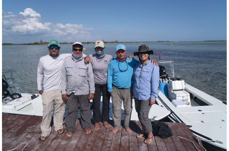 Scientists study declining numbers of bonefish in high-stress waters