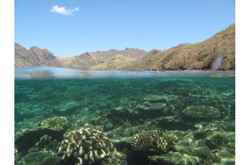 Scientists in Fiji examine how forest conservation helps coral reefs