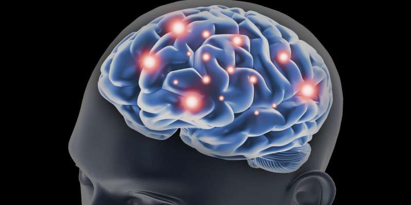 Study sheds light on how 'dopamine neurons' contribute to memory formation in humans