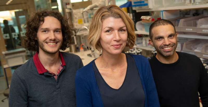 New method for studying ALS more effectively