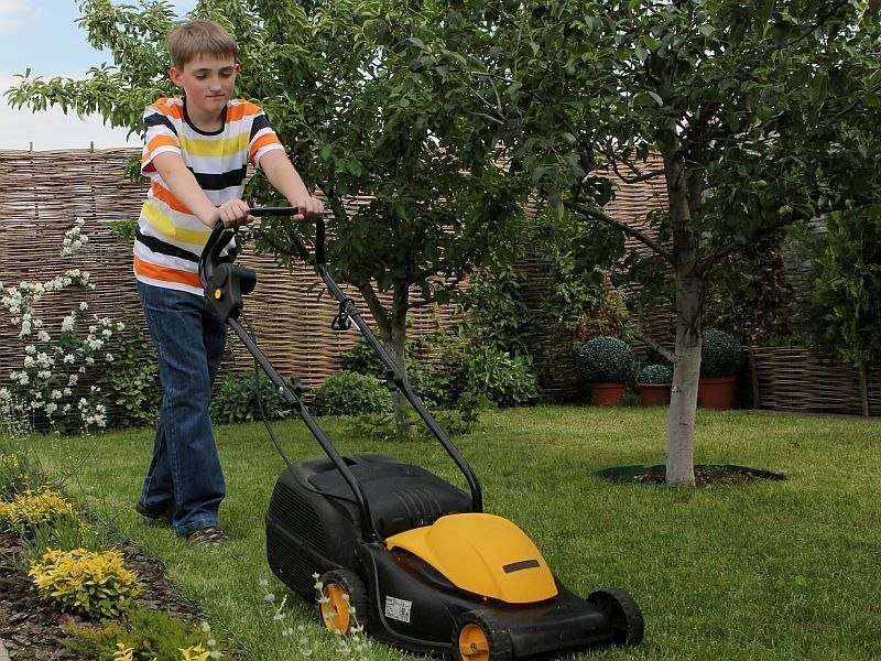 AAP: lawnmowers pose serious injury risk to children