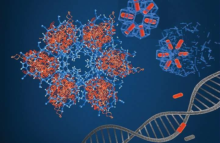 A delivery platform for gene-editing technology