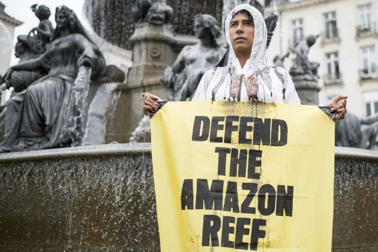 A Greenpeace activist protests in Nantes, France, against Total oil searching for crude near the Amazon's mouth