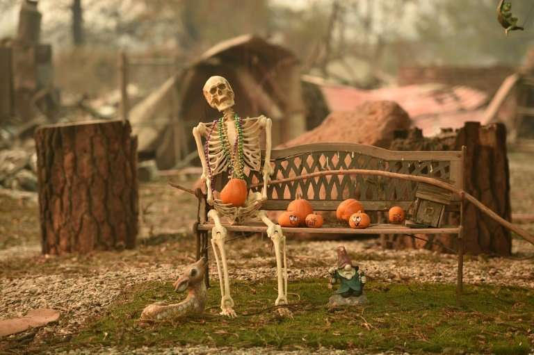 A halloween decoration remains at a burned home after the Camp fire tore through the region in Paradise, California on November