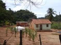 Alternative methods needed to detect all schistosomiasis cases