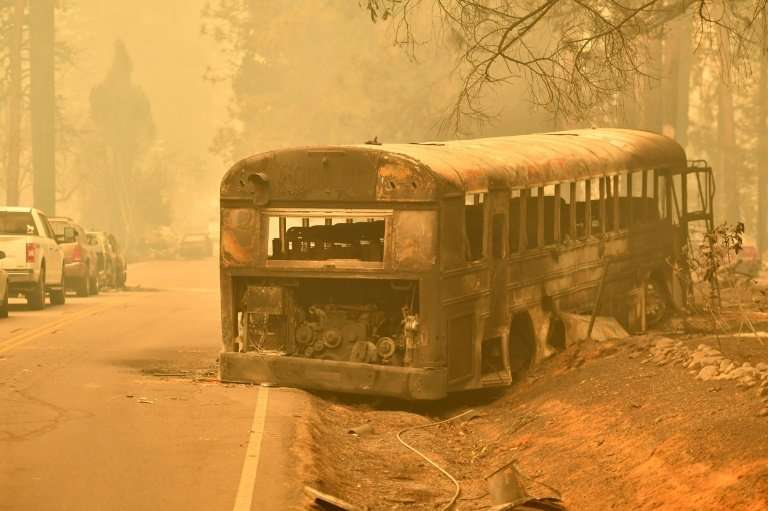 An abandoned burned-out school bus sits on the side of a road in Paradise
