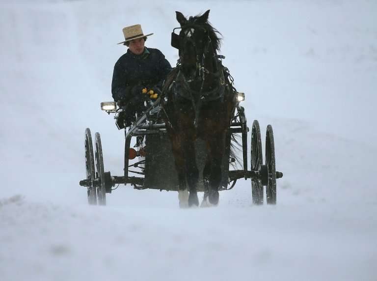 An Amish man drives his buggy through in Mechanicsville, Maryland: a recent study on the Amish showed the powerful effect of a s