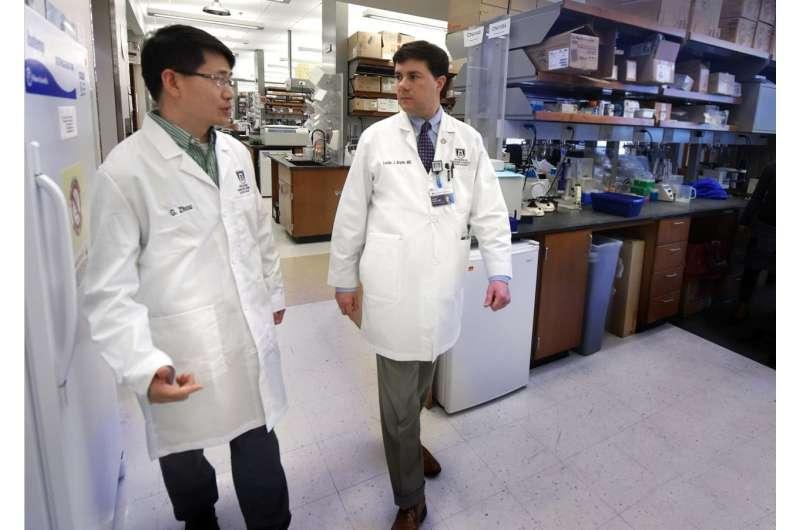 Antibiotics may impact cancer treatment efficacy