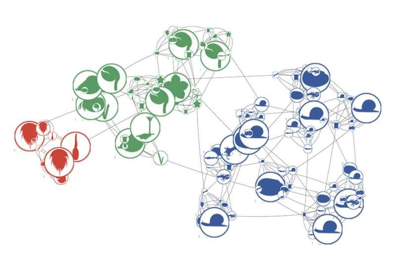 Applying network analysis to natural history