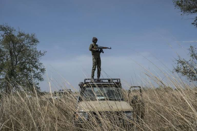 A ranger stands guard on top of a vehicle during an elephant collaring exercise at Pendjari National Park