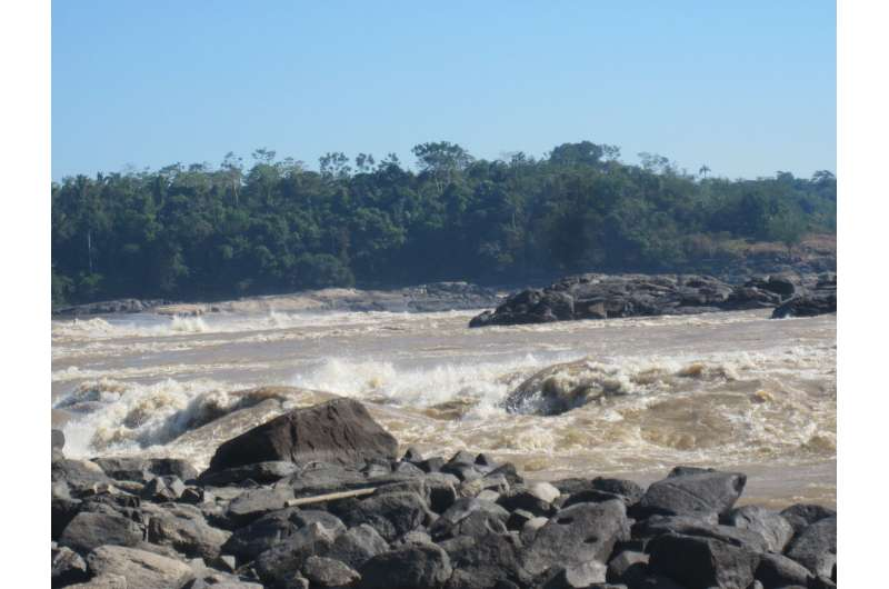 Archeological plant remains point to southwest Amazonia as crop domestication center