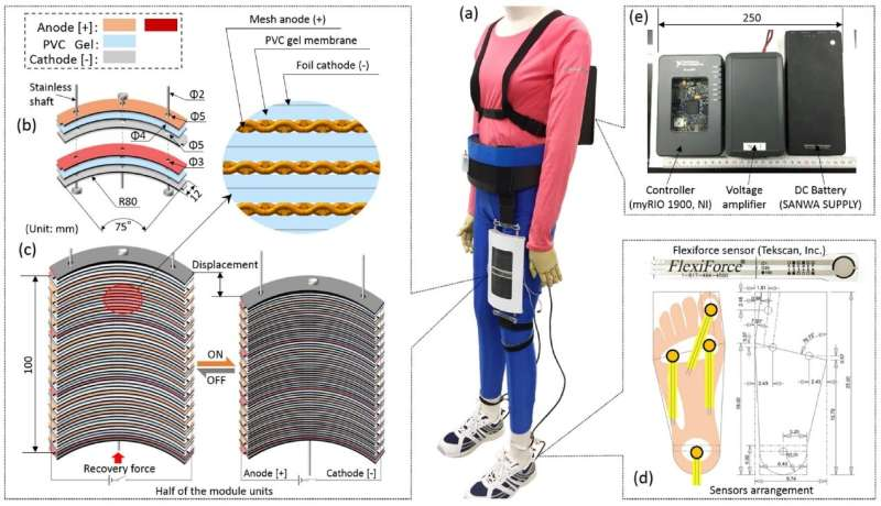 Artificial muscles power up with new gel-based robotics