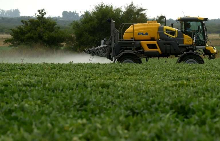 A soybean field is fumigated near Urdinarrain, Entre Rios province, Argentina