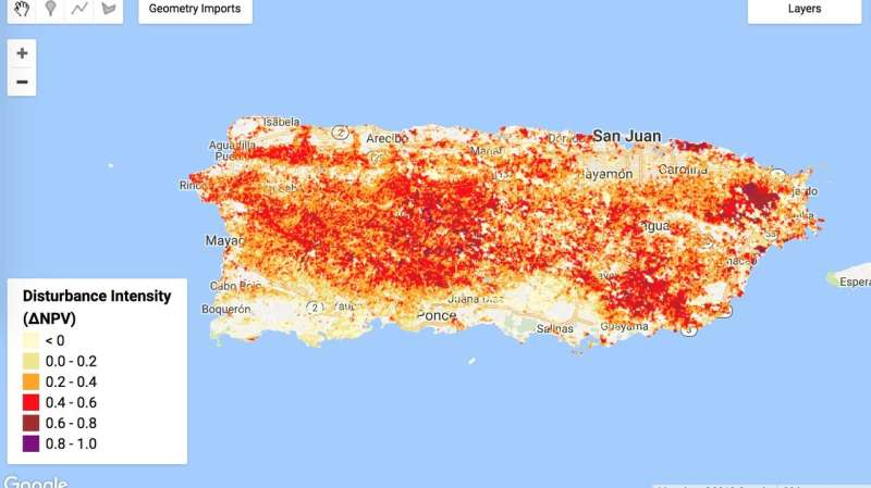 Assessing the impact of hurricanes on Puerto Rico's forests