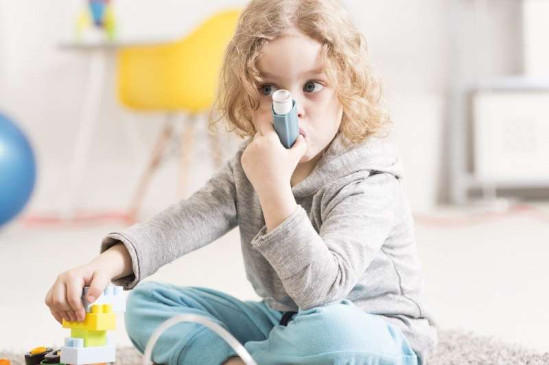Asthmatics show DNA changes in immune cells